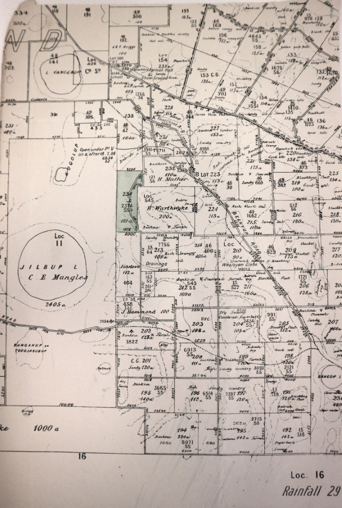 Map of land grants around Thomson's Lake, c1895